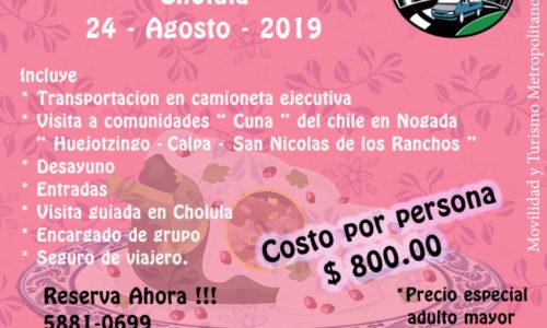 Chile Nogada 2019